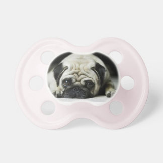 Pug Puppy pacifier