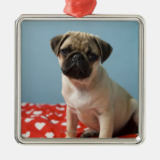 Pug puppy sitting on bed christmas ornament