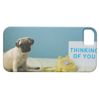Pug puppy sitting on bed next to phone and case for the iPhone 5