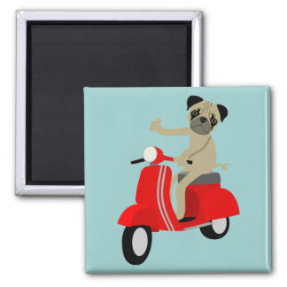 Pug Scooter Square Magnet