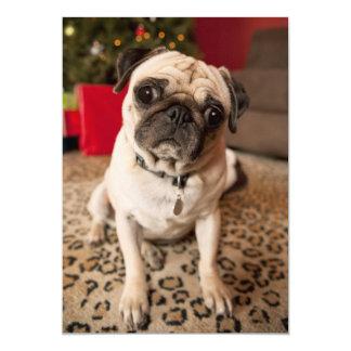Pug sitting on carpet, Christmas tree Card