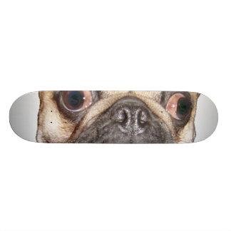 Pug Skate Boards