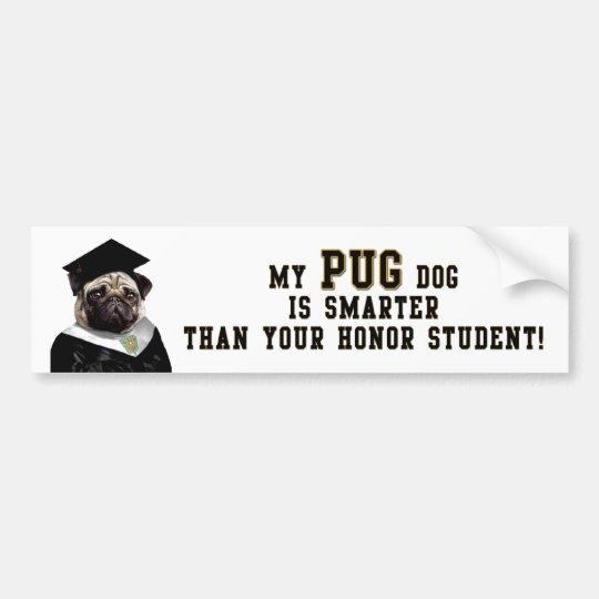 Pug smarter than honour student Bumper Sticker