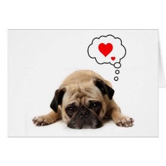 Pug Valentine Greeting Card