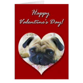 Pug Valentines Day Card
