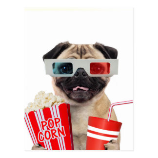 Pug watching a movie postcard