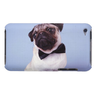 Pug wearing bow tie, close-up barely there iPod covers