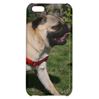 Pug Wearing Red Harness Cover For iPhone 5C