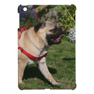 Pug Wearing Red Harness iPad Mini Cover