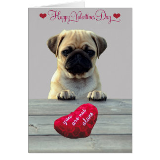 Pug Wishing Happy Valentine's day greeting card