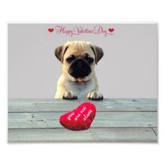 Pug Wishing Happy Valentine's day photo print