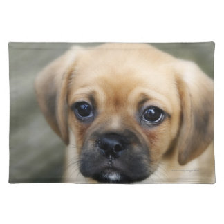 Pugalier Puppy Looking at Camera Placemat