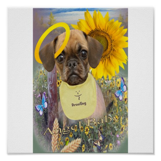 Puggle Drooling in daisies Poster