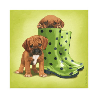 Puggle in boots gallery wrapped canvas