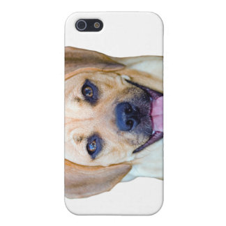 Puggle Power! iPhone 5 Covers