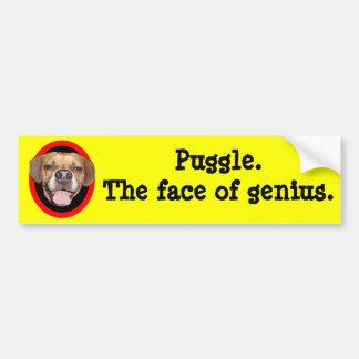 Puggle. The face of genius. Bumper Sticker
