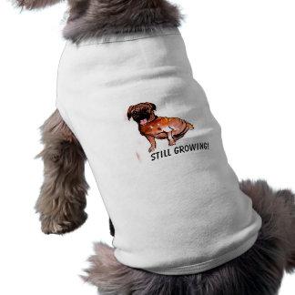 Pugnacious Pug Puppy, Still Growing! Sleeveless Dog Shirt