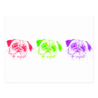 Pugs not Drugs Postcard