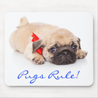 Pugs Rule Puppy Mousepad