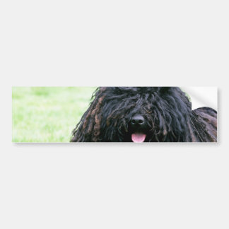 Puli Dog  Bumper Sticker