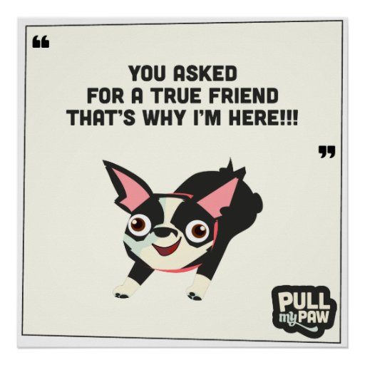 Pull My Paw - Poster 01