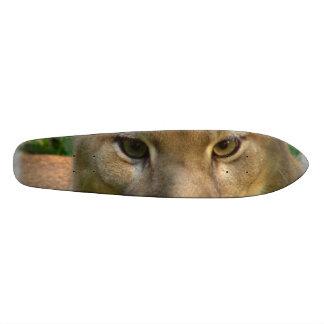 Puma Cat Skateboard Decks