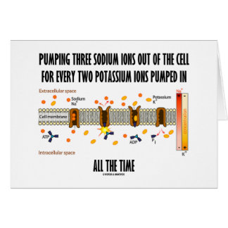 Pumping Three Sodium Ions Out Of Cell (Na-K Pump) Card