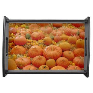 Pumpkin and Squash Tray