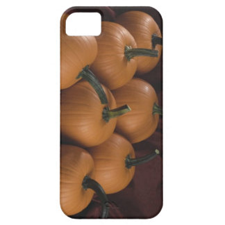 Pumpkin Barely There iPhone 5 Case
