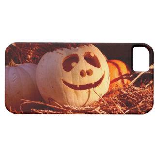 Pumpkin iPhone 5/5S Cover