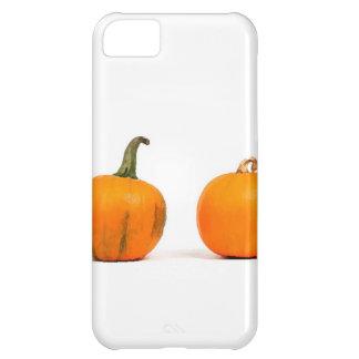 PUMPKIN CASE FOR iPhone 5C