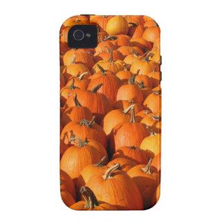 Pumpkin Case-Mate iPhone 4 Cases