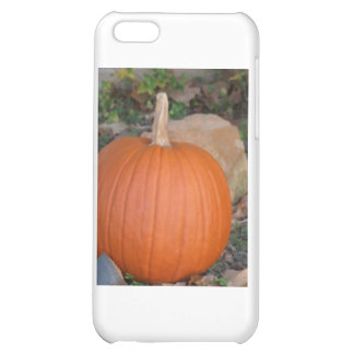 Pumpkin Cover For iPhone 5C