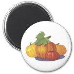 Pumpkin Decoration 6 Cm Round Magnet