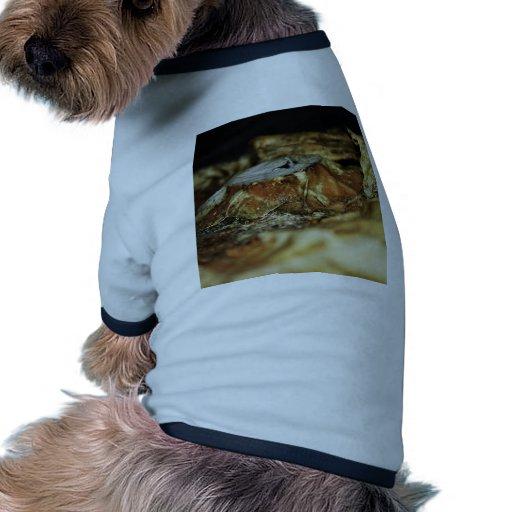 Pumpkin Pet T-shirt