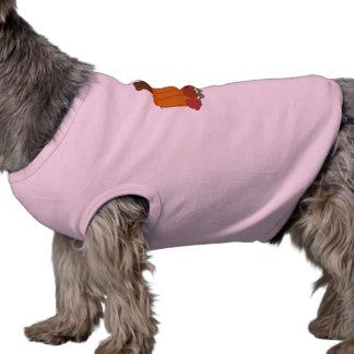 Pumpkin doggie dog clothing