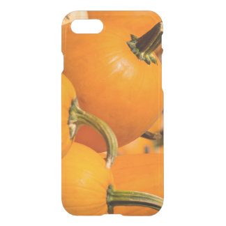 Pumpkin Harvest iPhone 7 Clearly™ Deflector Case