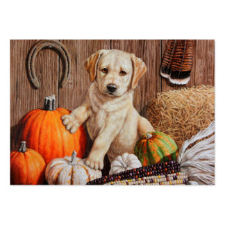 Pumpkin Harvest Puppy Pack Of Chubby Business Cards