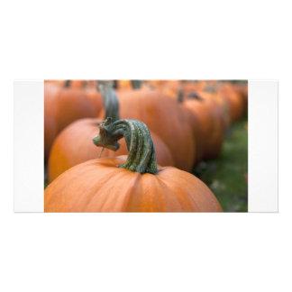 Pumpkin in Field Photo Greeting Card