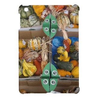 Pumpkin iPad Mini Covers