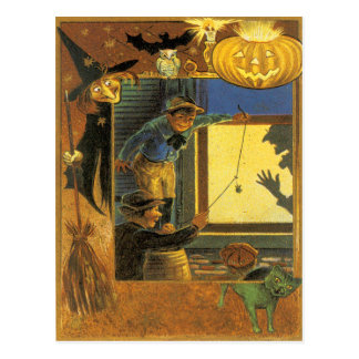 Pumpkin Jack O Lantern Witch Owl Bat Green Cat Postcards