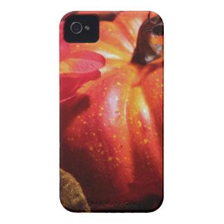 Pumpkin mf iPhone 4 covers