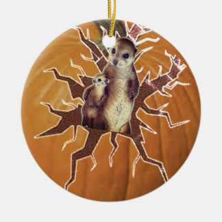 Pumpkin Mother Meerkat and Baby Christmas Ornament