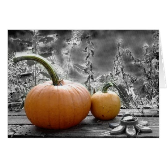 Pumpkin Note Cards