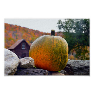 Pumpkin on a Vermont Rock Wall in Autumn Poster