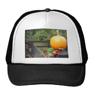 Pumpkin on Black Fence Hats