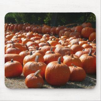 Pumpkin Patch Autumn Harvest Photography Mouse Pad