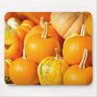 Pumpkin Patch for Halloween and Thanksgiving Mouse Pad