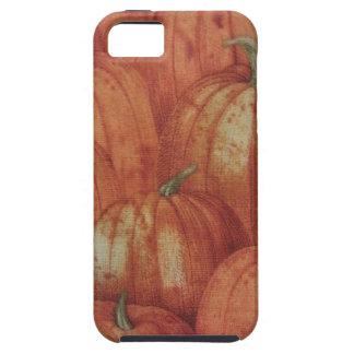 Pumpkin Patch iPhone 5 Case