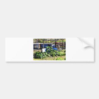 PUMPKIN PATCH RURAL QUEENSLAND AUSTRALIA BUMPER STICKER